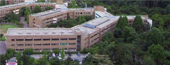 1981 - Moved to the Natural Sciences Campus (Suwon)
